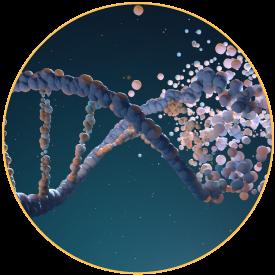 epigenetic-testing